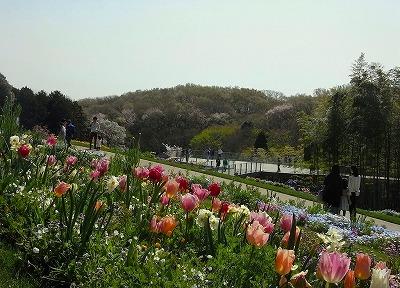 里山ガーデンへ「里山」を探しに行こう!