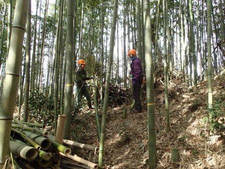 竹を活かすヤマ仕事 2月
