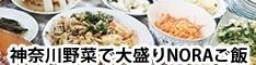 神奈川野菜で大盛りNORAご飯